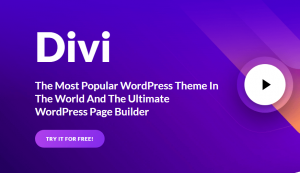 Que penser du theme wordpress Divi ?